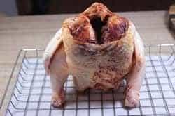 Chicken sitting on bradley rack
