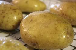 Oiled and salted potatoes