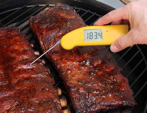 Thermapen Mk4 Thermometer Review